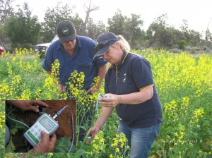 Field work in agricultural land rehabilitation