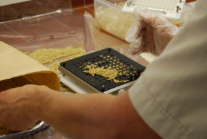 Preparing millet containing fungi